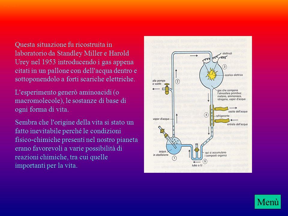 Or_vita2 Grandi distese di acqua occupavano quasi tutta la Terra e l'atmosfera che la circondava era composta da un miscuglio di gas: ammoniaca (NH3),