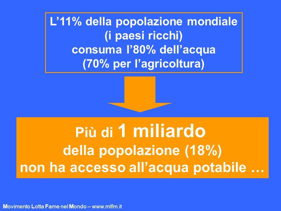 L11% della popolazione mondiale (i paesi ricchi) consuma l80% dellacqua (70% per lagricoltura) Più di 1 miliardo della popolazione (18%) non ha access