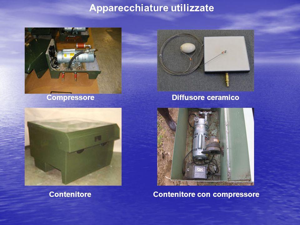 Apparecchiature utilizzate CompressoreDiffusore ceramico ContenitoreContenitore con compressore