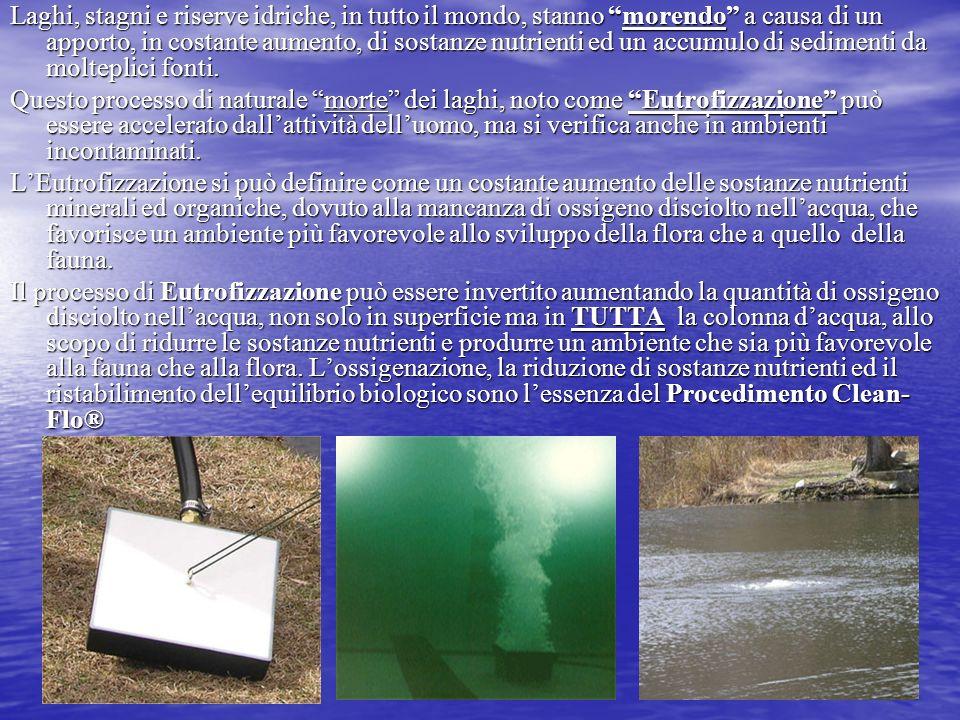 Laghi, stagni e riserve idriche, in tutto il mondo, stanno morendo a causa di un apporto, in costante aumento, di sostanze nutrienti ed un accumulo di sedimenti da molteplici fonti.