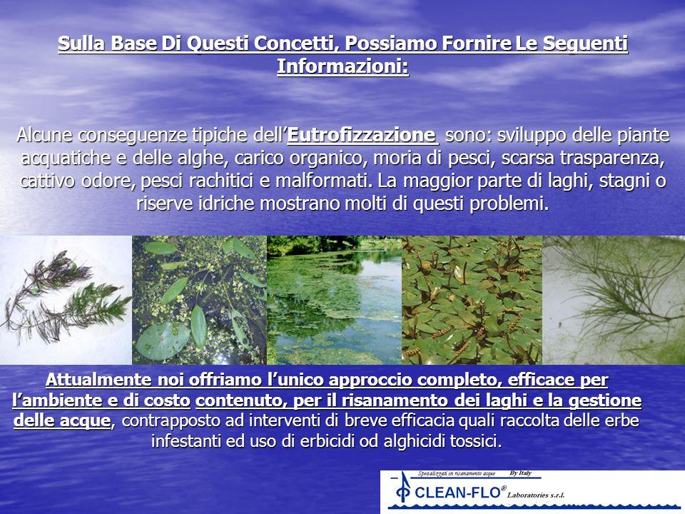 Sulla Base Di Questi Concetti, Possiamo Fornire Le Seguenti Informazioni: Alcune conseguenze tipiche dellEutrofizzazione sono: sviluppo delle piante a