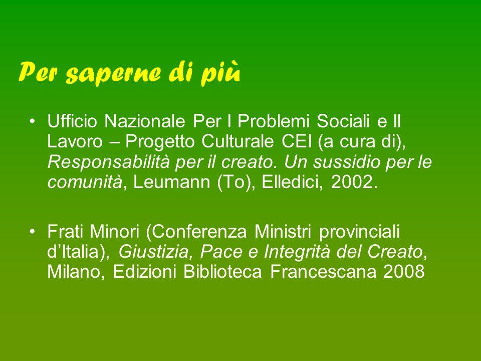Ufficio Nazionale Per I Problemi Sociali e Il Lavoro – Progetto Culturale CEI (a cura di), Responsabilità per il creato.
