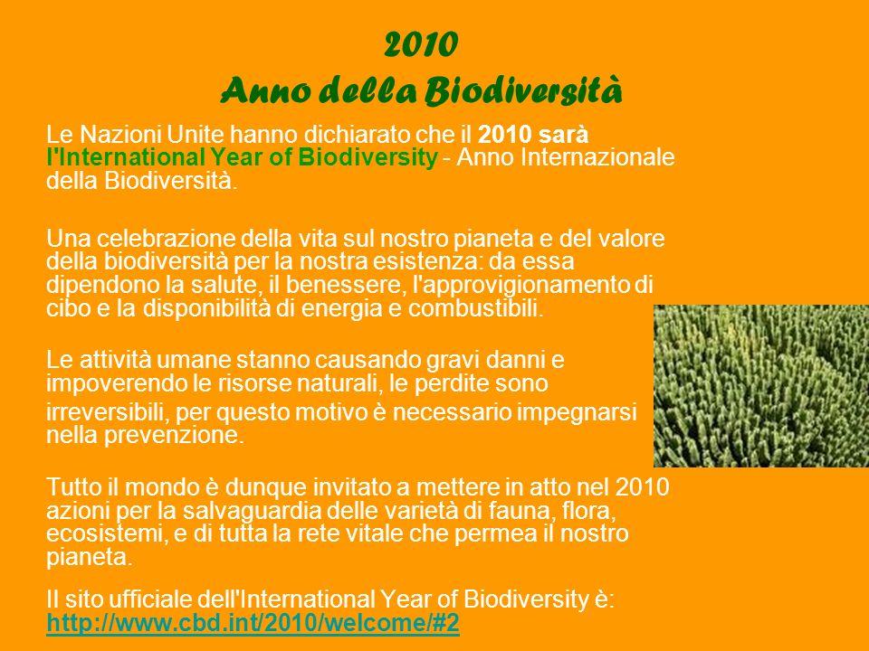 2010 Anno della Biodiversità Le Nazioni Unite hanno dichiarato che il 2010 sarà l International Year of Biodiversity - Anno Internazionale della Biodiversità.