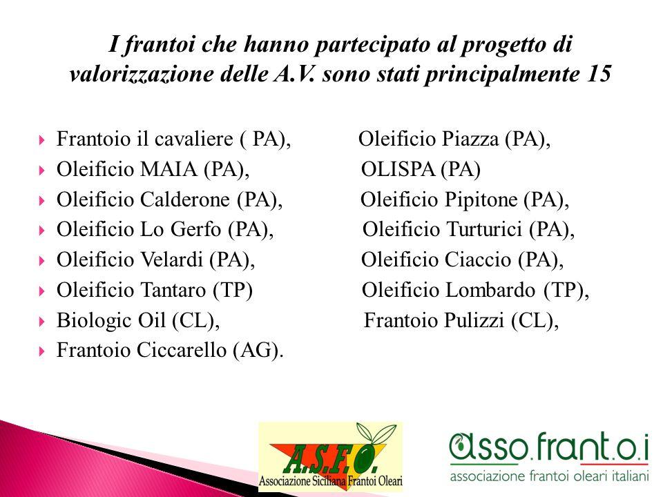 I frantoi che hanno partecipato al progetto di valorizzazione delle A.V. sono stati principalmente 15 Frantoio il cavaliere ( PA), Oleificio Piazza (P