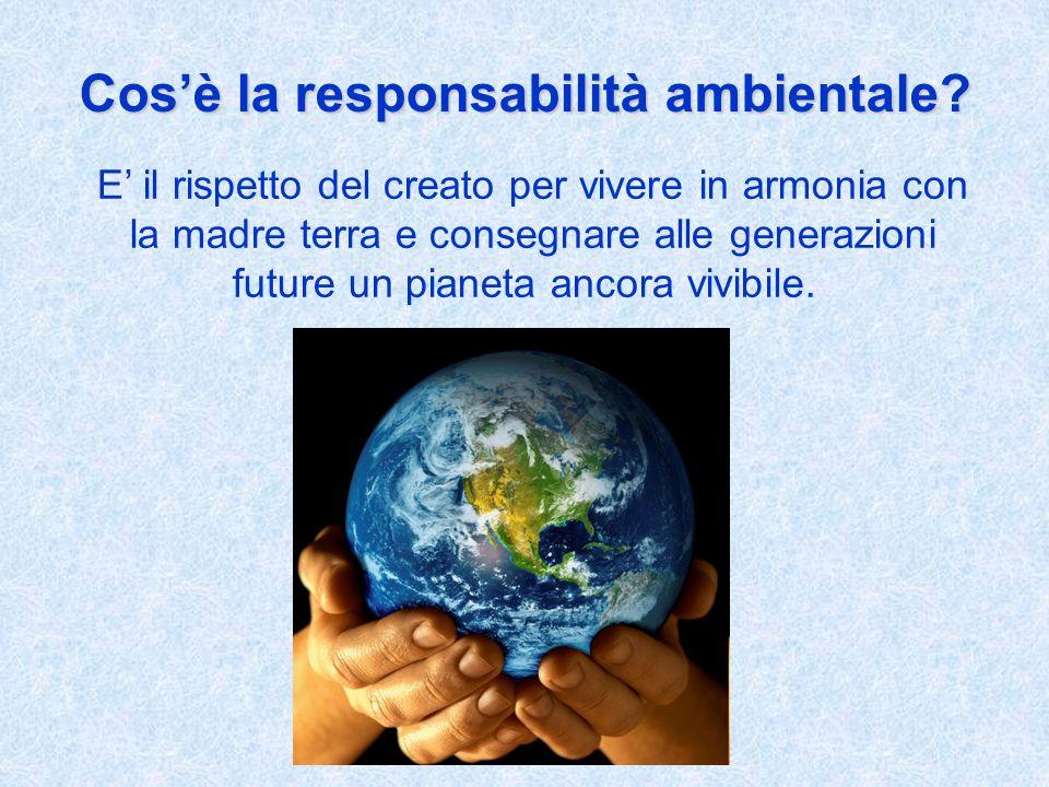 Cosè la responsabilità ambientale.