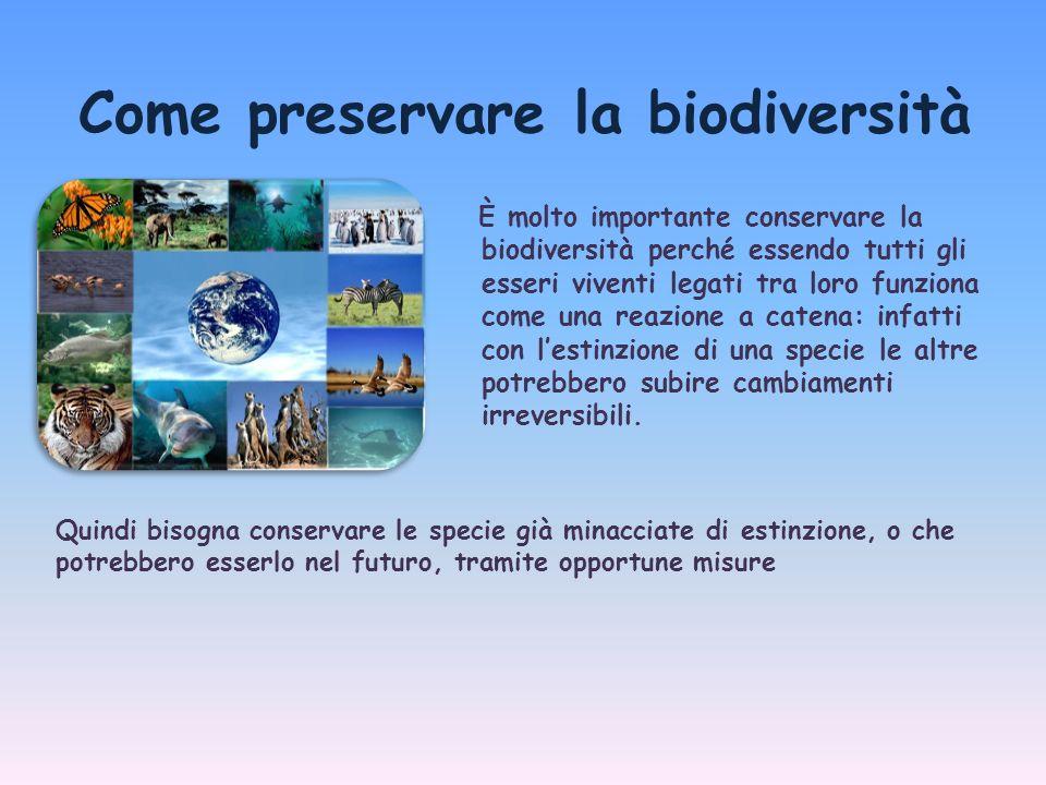 Anche noi possiamo aiutare a preservare la biodiversità con comportamenti più rispettosi nei confronti della natura, non solo a casa nostra ma anche quando ci rechiamo in altri paesi come turisti……
