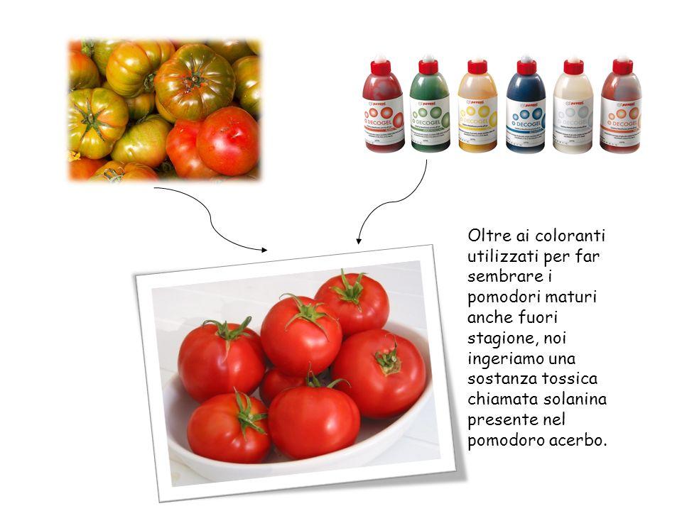 Oltre ai coloranti utilizzati per far sembrare i pomodori maturi anche fuori stagione, noi ingeriamo una sostanza tossica chiamata solanina presente n