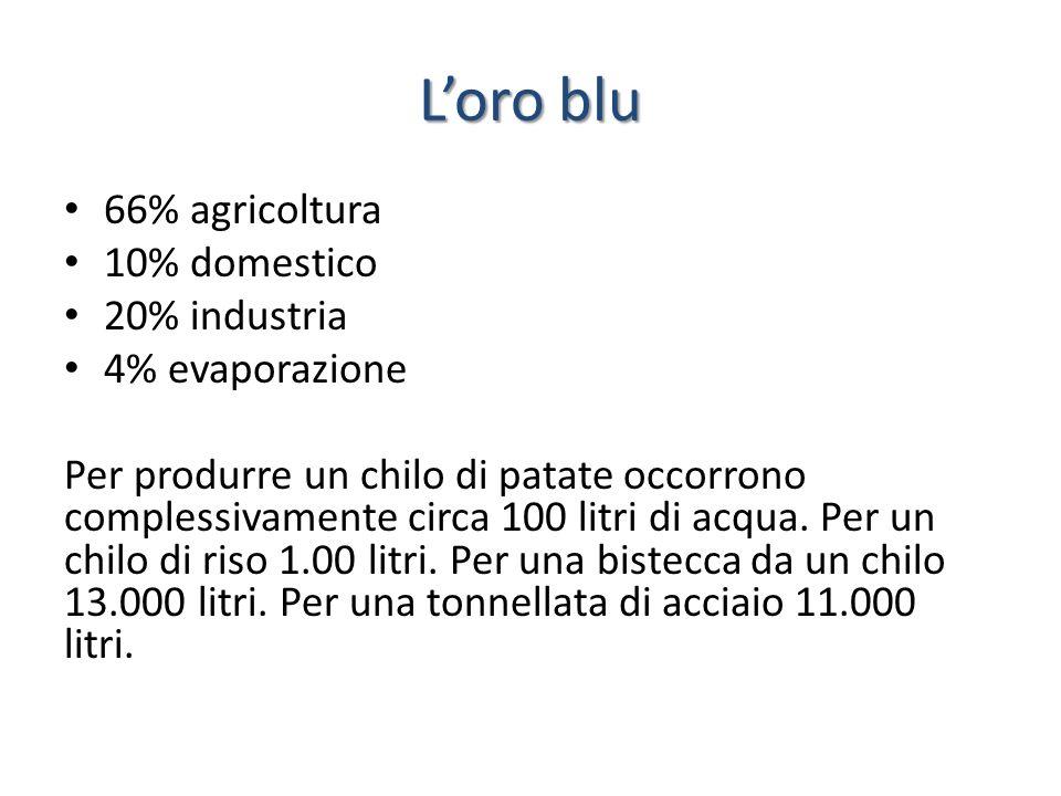 Loro blu 66% agricoltura 10% domestico 20% industria 4% evaporazione Per produrre un chilo di patate occorrono complessivamente circa 100 litri di acq