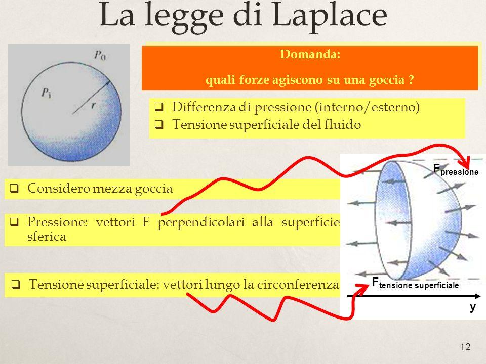 12 Considero mezza goccia Tensione superficiale: vettori lungo la circonferenza Pressione: vettori F perpendicolari alla superficie sferica La legge di Laplace Domanda: quali forze agiscono su una goccia .