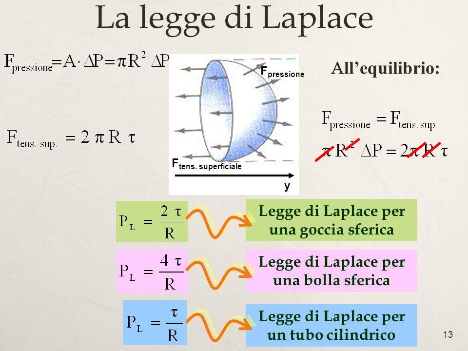 13 La legge di Laplace Legge di Laplace per una goccia sferica Legge di Laplace per una bolla sferica Legge di Laplace per un tubo cilindrico llequilibrio: y F pressione F tens.