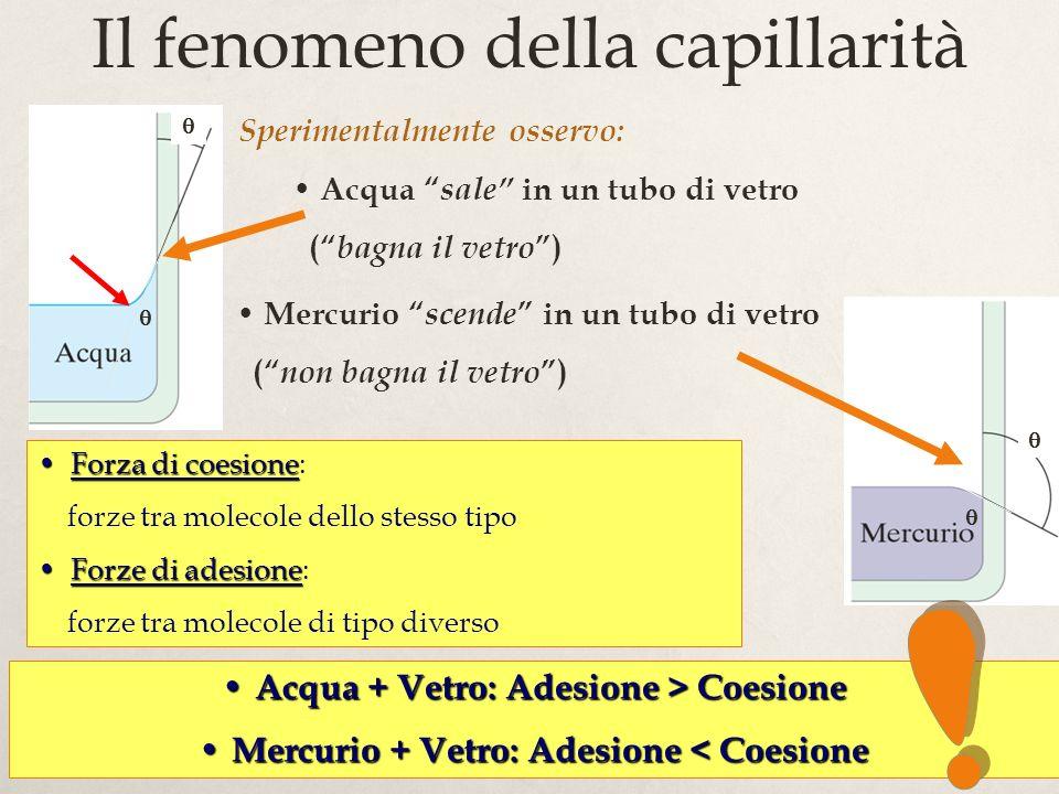17 Il fenomeno della capillarità Sperimentalmente osservo: Acqua sale in un tubo di vetro ( bagna il vetro ) Forza di coesioneForza di coesione: forze tra molecole dello stesso tipo Forze di adesioneForze di adesione: forze tra molecole di tipo diverso Acqua + Vetro: Adesione > Coesione Acqua + Vetro: Adesione > Coesione Mercurio + Vetro: Adesione < Coesione Mercurio + Vetro: Adesione < Coesione Mercurio scende in un tubo di vetro ( non bagna il vetro ) menisco