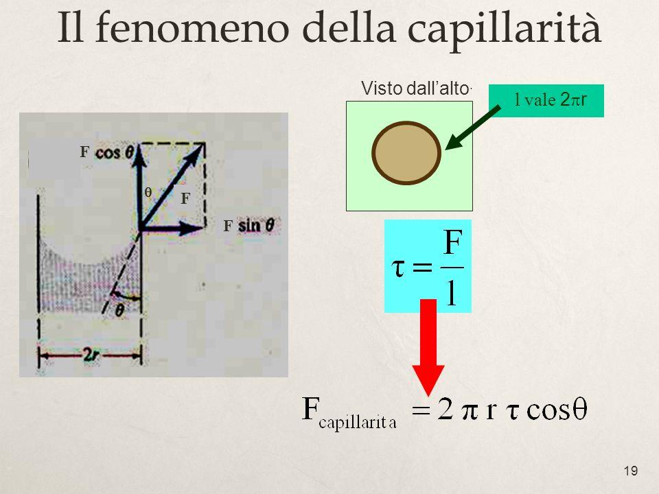 19 Il fenomeno della capillarità Visto dallalto. l vale 2 r F F F