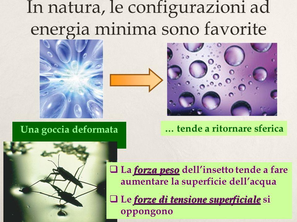 8 In natura, le configurazioni ad energia minima sono favorite … tende a ritornare sferica Una goccia deformata … forza peso La forza peso dellinsetto tende a fare aumentare la superficie dellacqua forze di tensione superficiale Le forze di tensione superficiale si oppongono