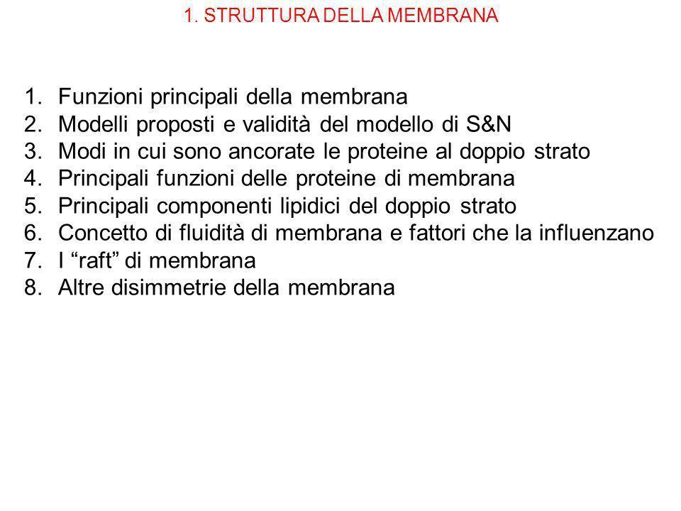 1. STRUTTURA DELLA MEMBRANA 1.Funzioni principali della membrana 2.Modelli proposti e validità del modello di S&N 3.Modi in cui sono ancorate le prote