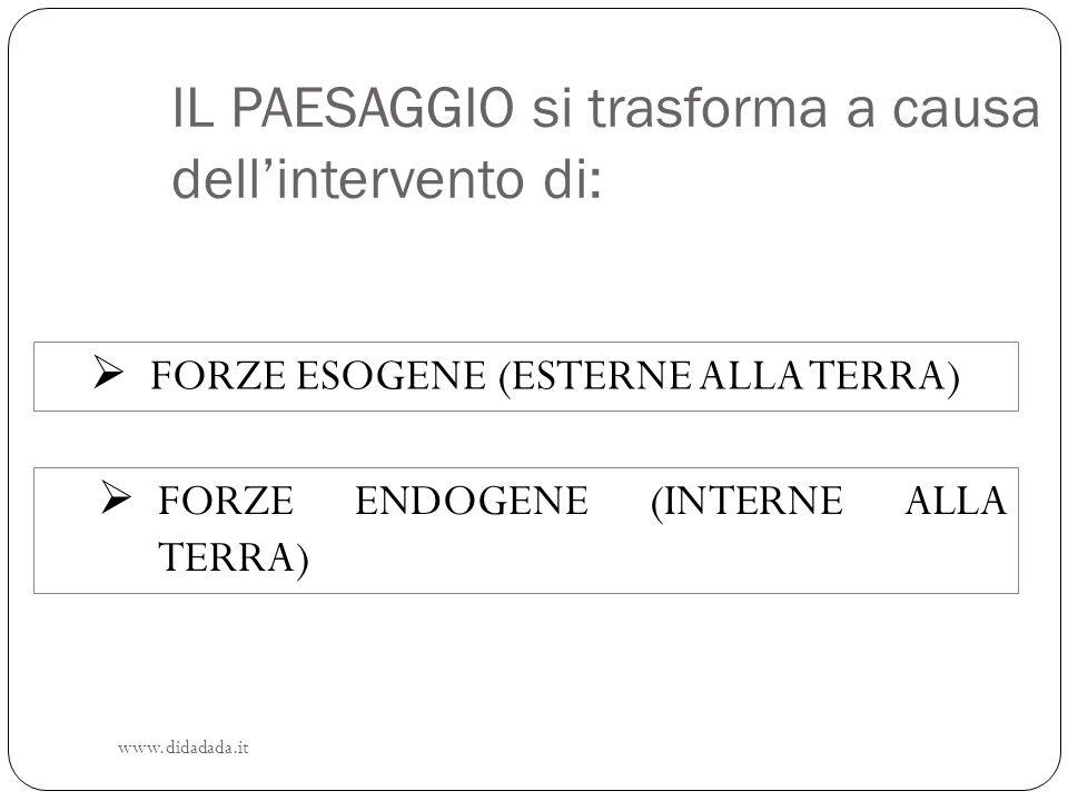 IL PAESAGGIO si trasforma a causa dellintervento di: FORZE ENDOGENE (INTERNE ALLA TERRA) FORZE ESOGENE (ESTERNE ALLA TERRA) www.didadada.it