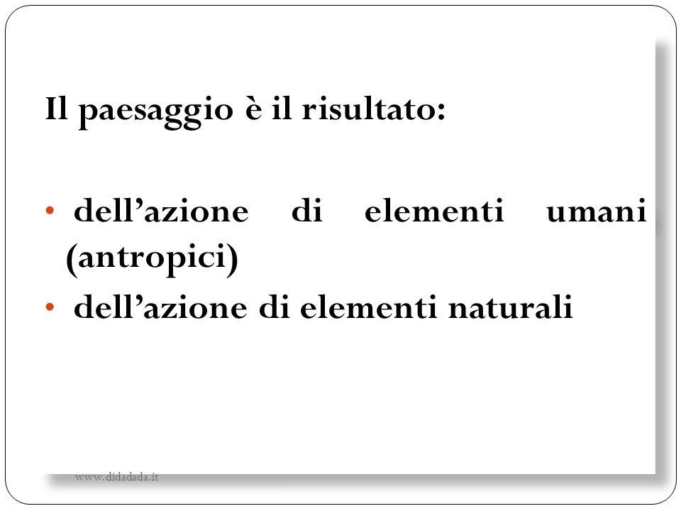 Il paesaggio è il risultato: dellazione di elementi umani (antropici) dellazione di elementi naturali Il paesaggio è il risultato: dellazione di eleme