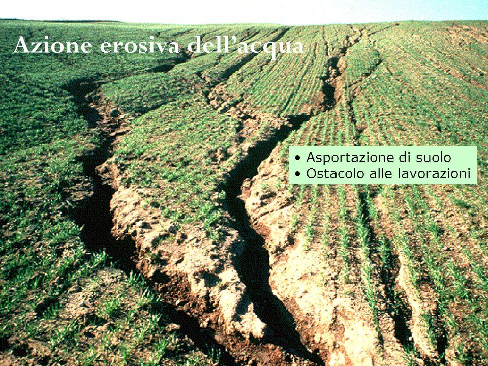 Azione erosiva dellacqua Asportazione di suolo Ostacolo alle lavorazioni www.didadada.it