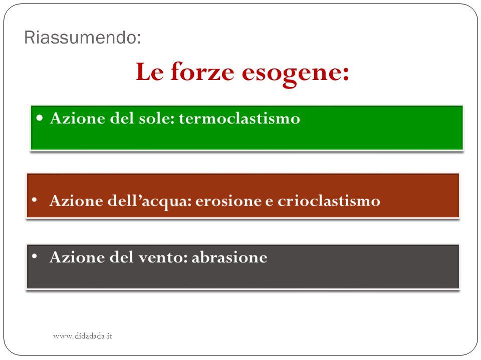 Riassumendo: www.didadada.it Le forze esogene: