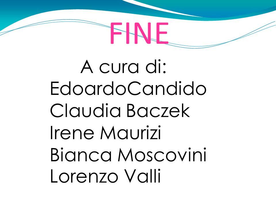 FINE A cura di: EdoardoCandido Claudia Baczek Irene Maurizi Bianca Moscovini Lorenzo Valli