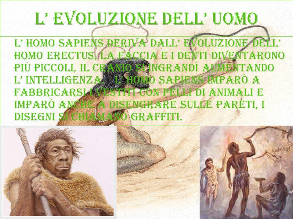 L evoluzione dell uomo L homo sapiens deriva dall evoluzione dell homo erectus, la faccia e i denti diventarono più piccoli, il cranio si ingrandì aum