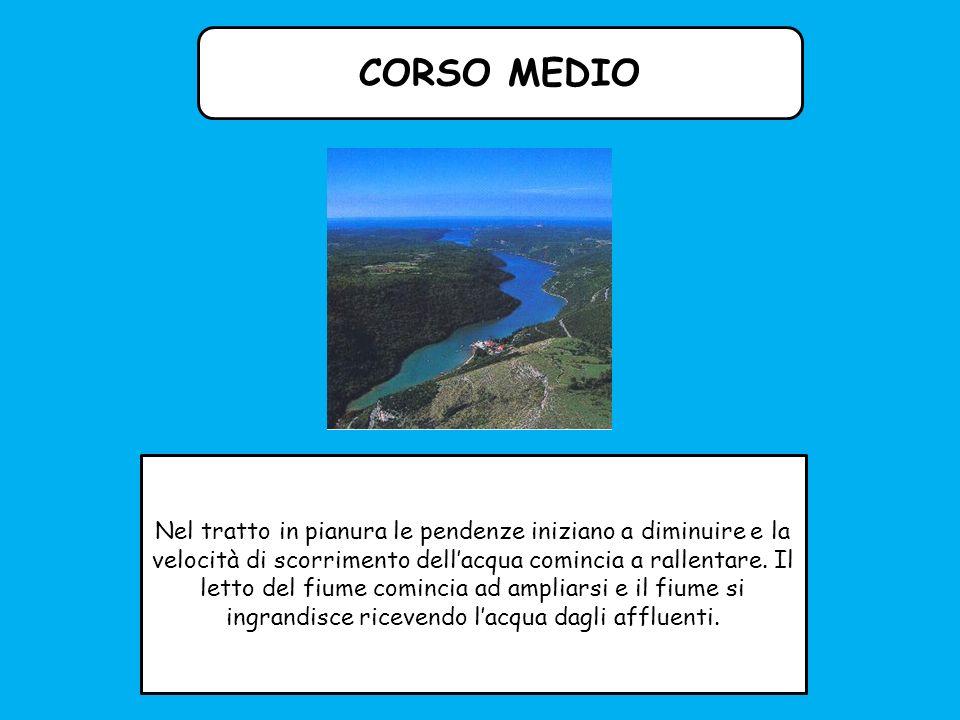AFFLUENTE Corso d acqua che versa le sue acque in un altro più grande; si distinguono a.