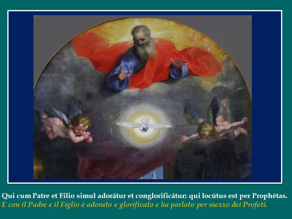 Papa Francesco ha dedicato lUdienza Generale di mercoledì 8 maggio 2013 in Piazza San Pietro al Credo Credo nello Spirito Santo che è Signore e dà la