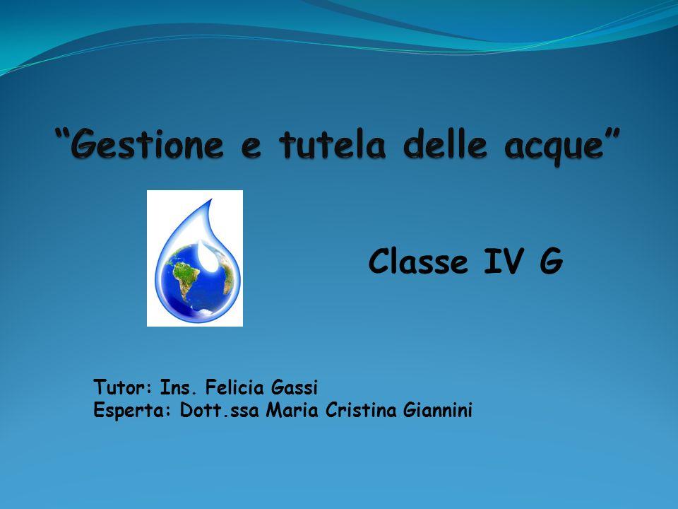 Classe IV G Tutor: Ins. Felicia Gassi Esperta: Dott.ssa Maria Cristina Giannini