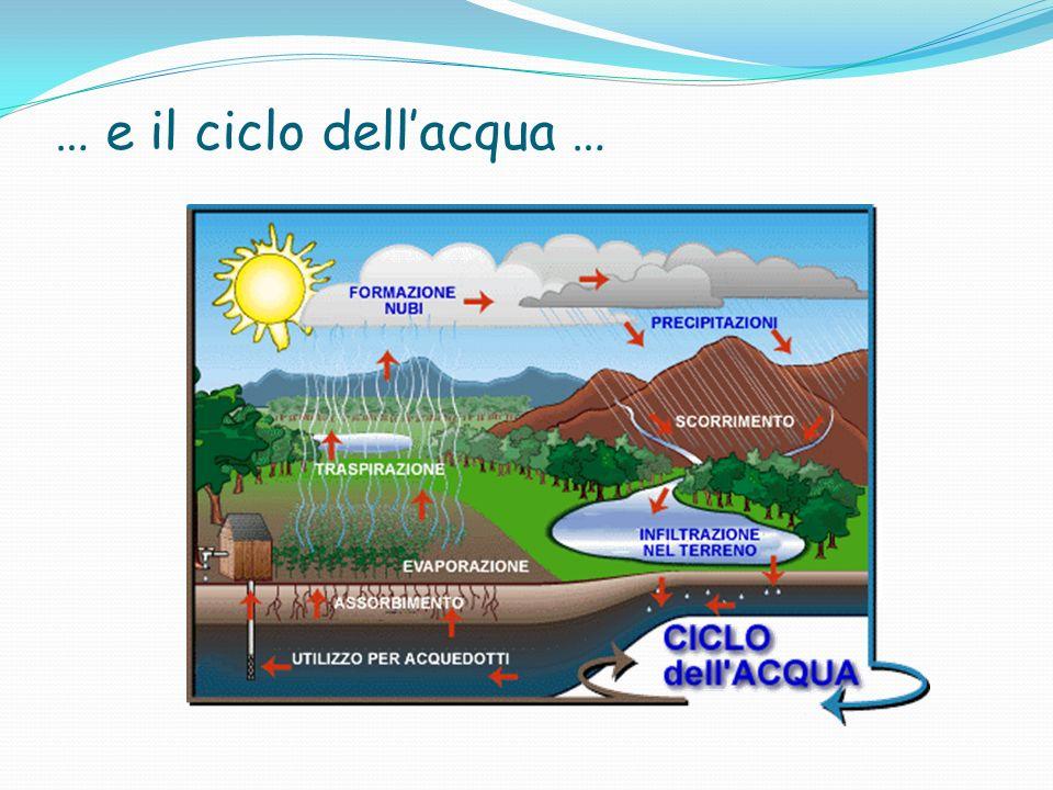 … e il ciclo dellacqua …