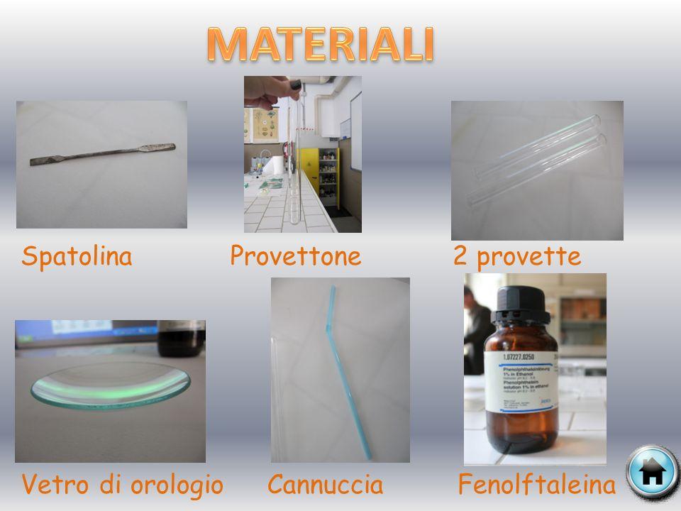Ossido di Calcio (calce viva o CaO ) Acqua distillata (H 2 O) Anidride Carbonica (CO 2 )