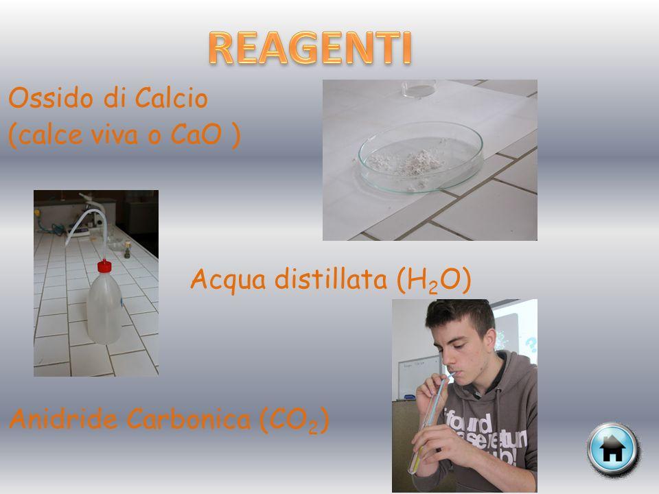Mettiamo una spatolina di ossido di calcio (CaO) in un provettone riempito dacqua distillata.