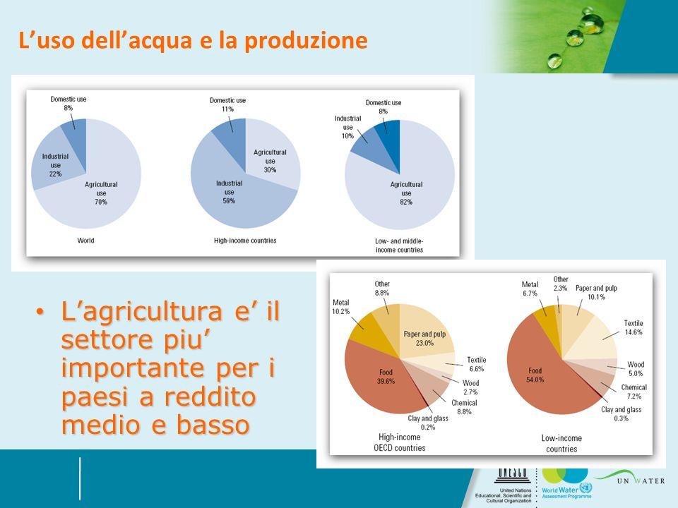 Luso dellacqua e la produzione Lagricultura e il settore piu importante per i paesi a reddito medio e basso Lagricultura e il settore piu importante p