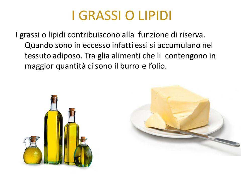 I GRASSI O LIPIDI I grassi o lipidi contribuiscono alla funzione di riserva. Quando sono in eccesso infatti essi si accumulano nel tessuto adiposo. Tr