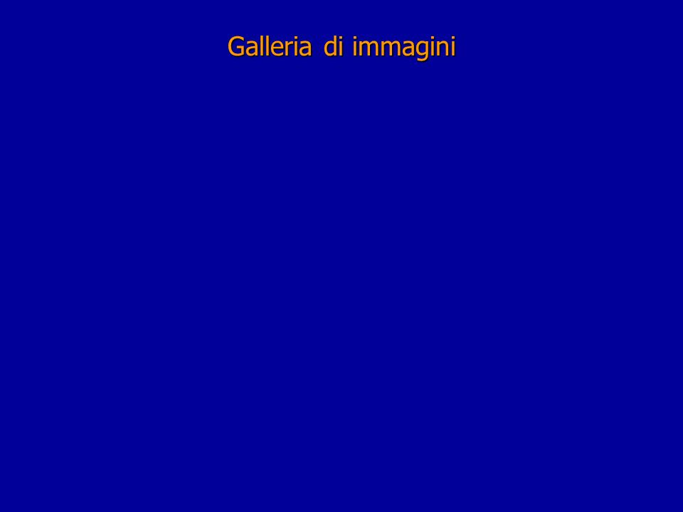Galleria di immagini