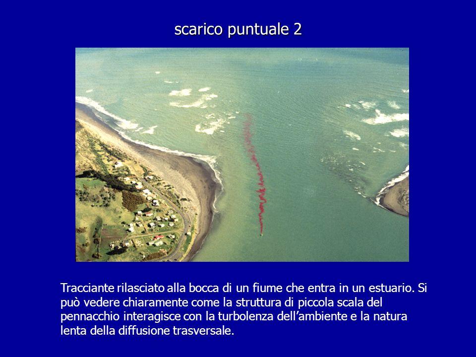 scarico puntuale 2 Tracciante rilasciato alla bocca di un fiume che entra in un estuario. Si può vedere chiaramente come la struttura di piccola scala