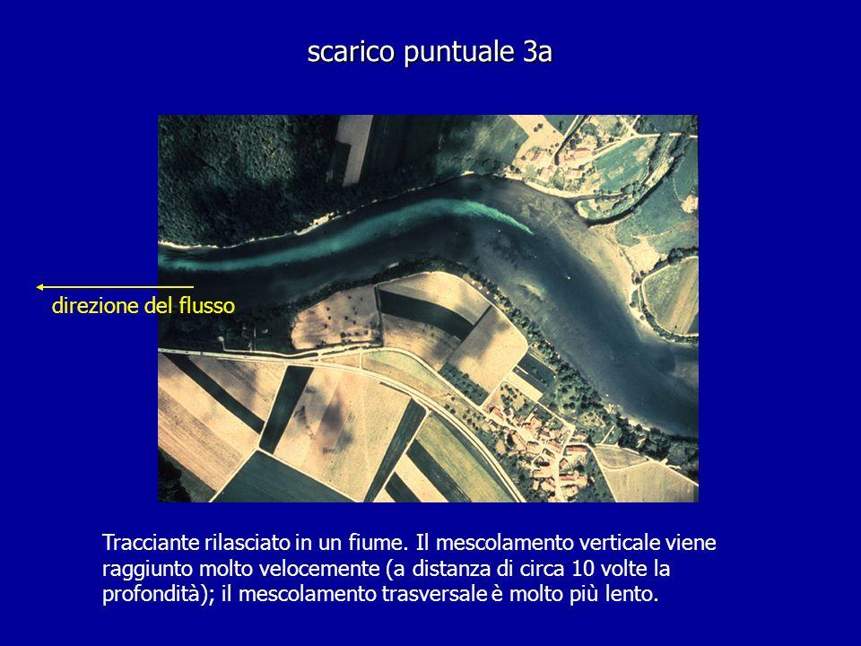 scarico puntuale 3a direzione del flusso Tracciante rilasciato in un fiume. Il mescolamento verticale viene raggiunto molto velocemente (a distanza di
