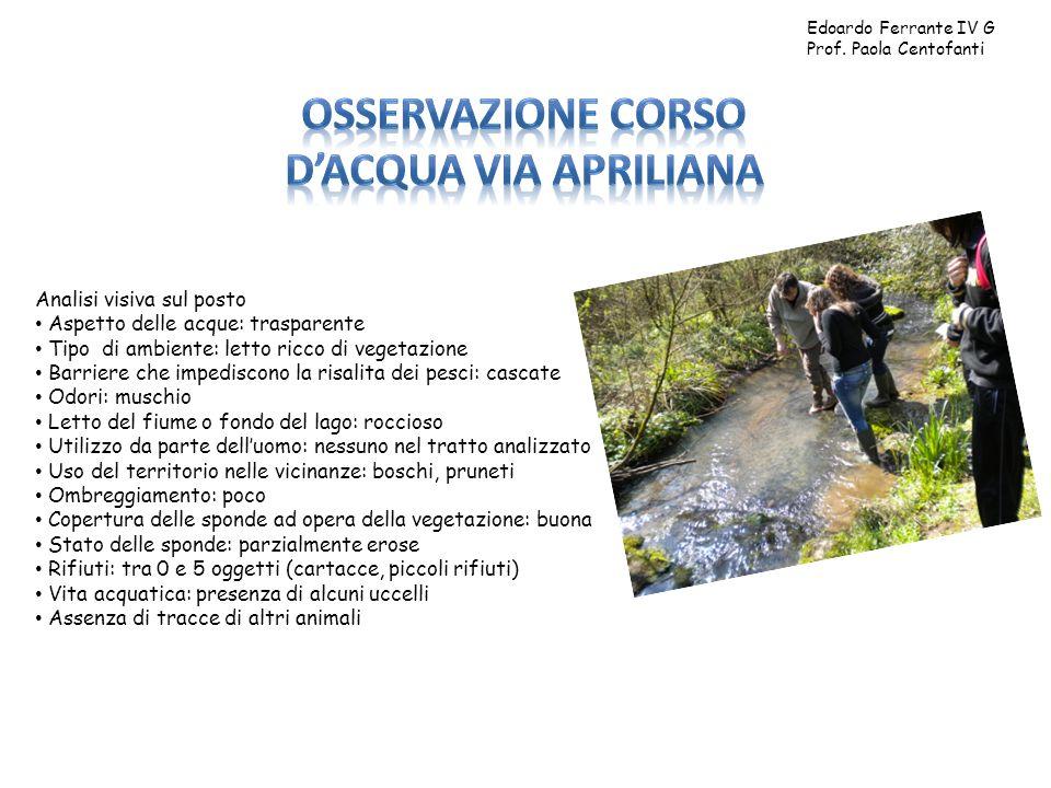 Edoardo Ferrante IV G Prof. Paola Centofanti Analisi visiva sul posto Aspetto delle acque: trasparente Tipo di ambiente: letto ricco di vegetazione Ba