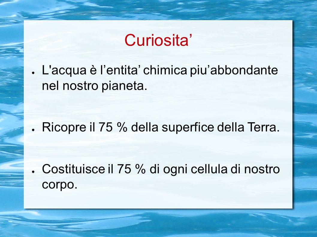 Curiosita L'acqua è lentita chimica piuabbondante nel nostro pianeta. Ricopre il 75 % della superfice della Terra. Costituisce il 75 % di ogni cellula