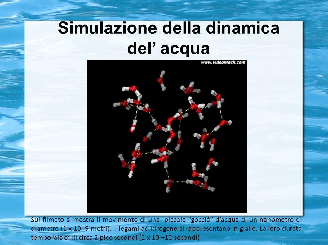 Simulazione della dinamica del acqua Sul filmato si mostra il movimento di una piccola gocciá dacqua di un nanometro di diametro (1 x 10 -9 metri). I