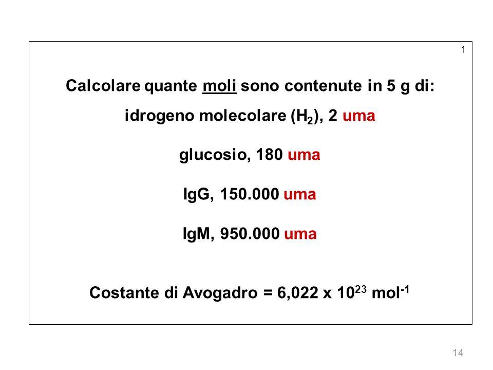 14 1 Calcolare quante moli sono contenute in 5 g di: idrogeno molecolare (H 2 ), 2 uma glucosio, 180 uma IgG, 150.000 uma IgM, 950.000 uma Costante di