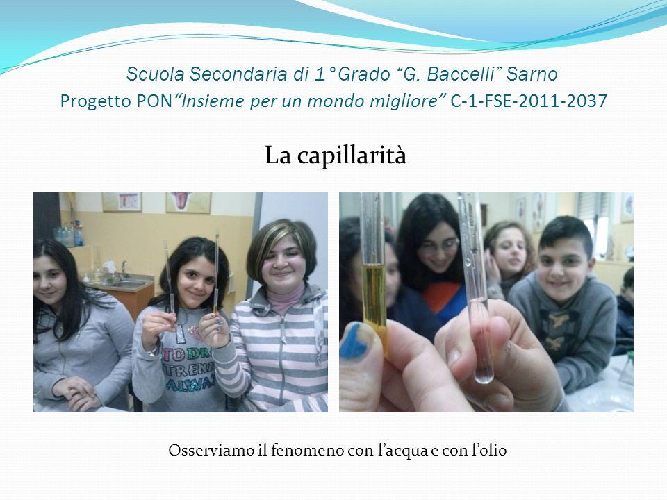 Scuola Secondaria di 1°Grado G. Baccelli Sarno Progetto PONInsieme per un mondo migliore C-1-FSE-2011-2037 La capillarità Osserviamo il fenomeno con l