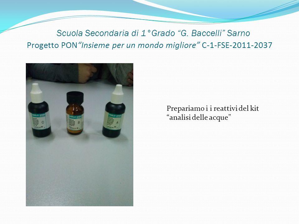 Scuola Secondaria di 1°Grado G. Baccelli Sarno Progetto PONInsieme per un mondo migliore C-1-FSE-2011-2037 Prepariamo i i reattivi del kit analisi del