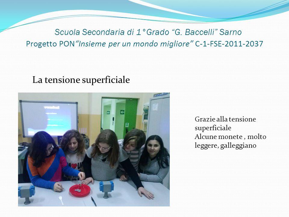 Scuola Secondaria di 1°Grado G. Baccelli Sarno Progetto PONInsieme per un mondo migliore C-1-FSE-2011-2037 La tensione superficiale Grazie alla tensio