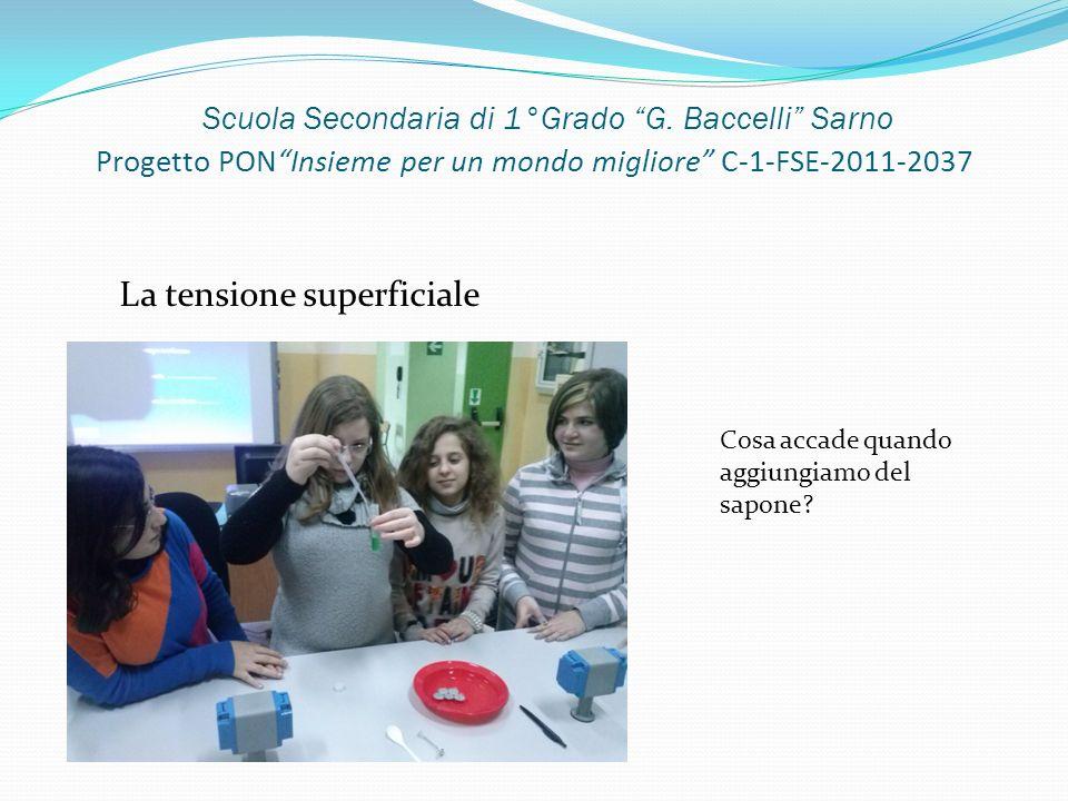 Scuola Secondaria di 1°Grado G. Baccelli Sarno Progetto PONInsieme per un mondo migliore C-1-FSE-2011-2037 La tensione superficiale Cosa accade quando