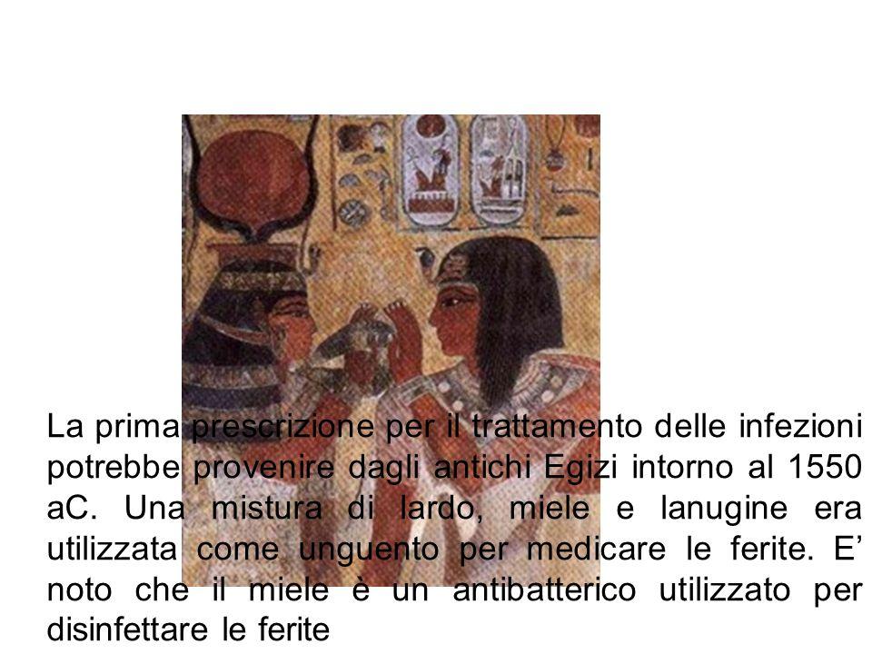 La prima prescrizione per il trattamento delle infezioni potrebbe provenire dagli antichi Egizi intorno al 1550 aC. Una mistura di lardo, miele e lanu