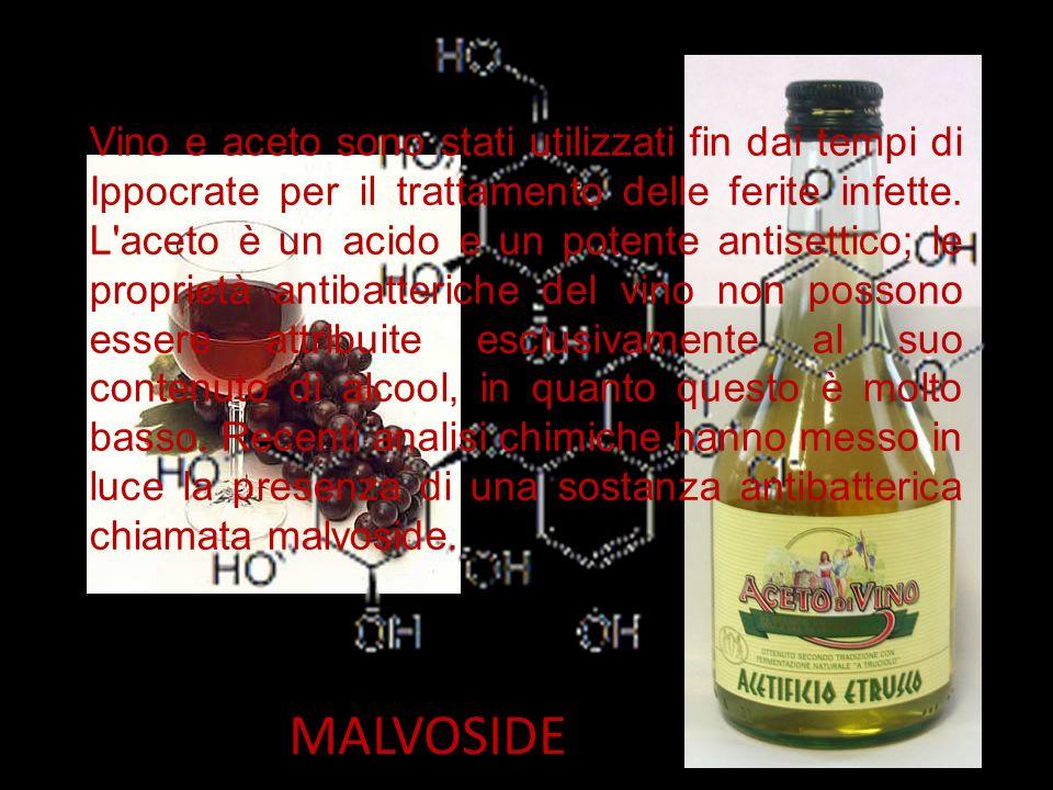 MALVOSIDE Vino e aceto sono stati utilizzati fin dai tempi di Ippocrate per il trattamento delle ferite infette. L'aceto è un acido e un potente antis