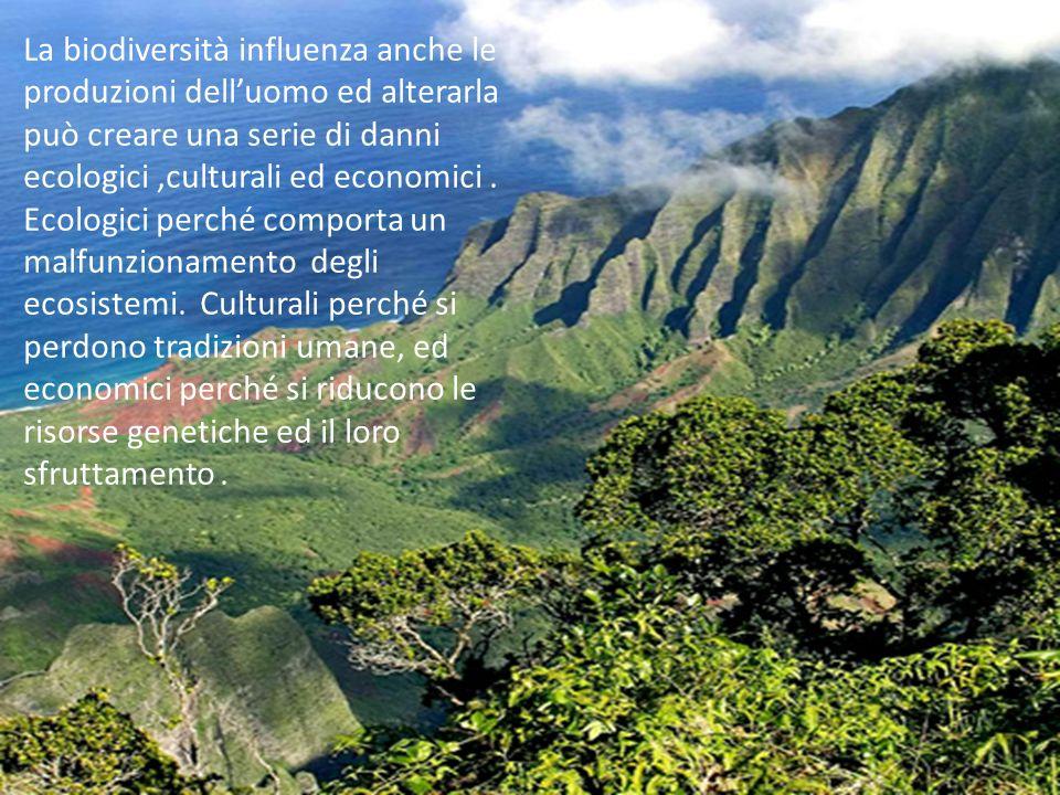 La biodiversità influenza anche le produzioni delluomo ed alterarla può creare una serie di danni ecologici,culturali ed economici. Ecologici perché c