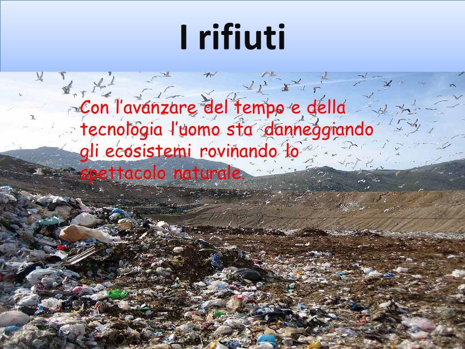 I rifiuti Con lavanzare del tempo e della tecnologia luomo sta danneggiando gli ecosistemi rovinando lo spettacolo naturale.