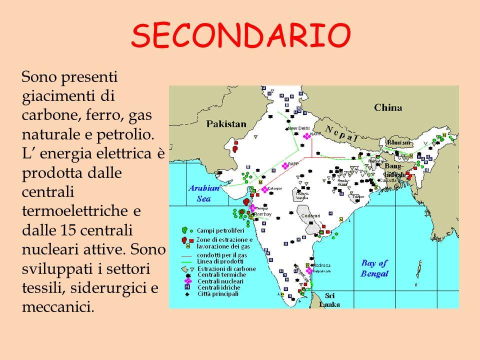 SECONDARIO Sono presenti giacimenti di carbone, ferro, gas naturale e petrolio. L energia elettrica è prodotta dalle centrali termoelettriche e dalle