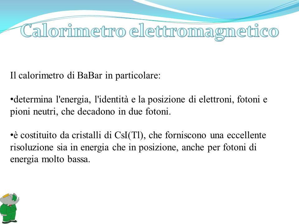 Il calorimetro di BaBar in particolare: determina l'energia, l'identità e la posizione di elettroni, fotoni e pioni neutri, che decadono in due fotoni