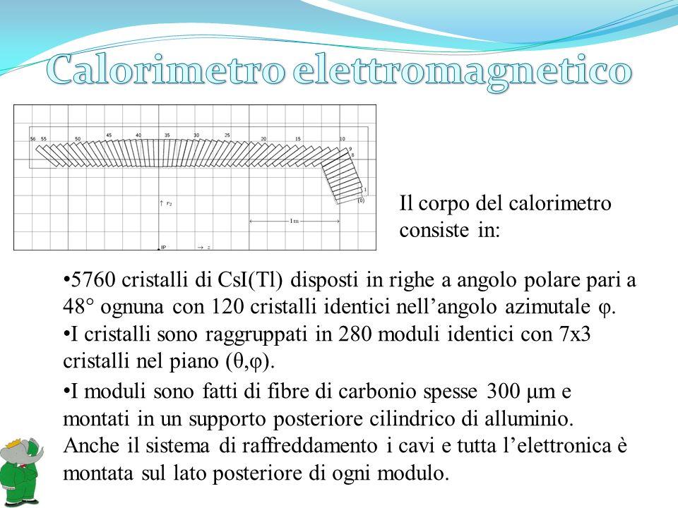 Il corpo del calorimetro consiste in: I moduli sono fatti di fibre di carbonio spesse 300 μm e montati in un supporto posteriore cilindrico di allumin
